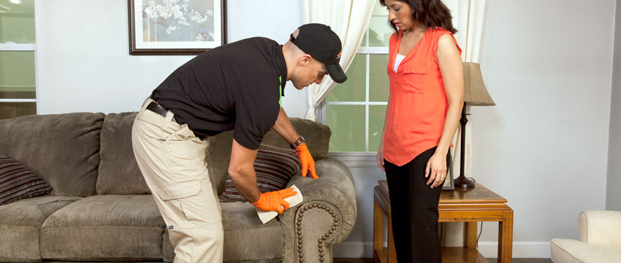 Salem, NH carpet upholstery cleaning